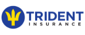 Make a Payment - Trident Insurance Barbados - Car & Home